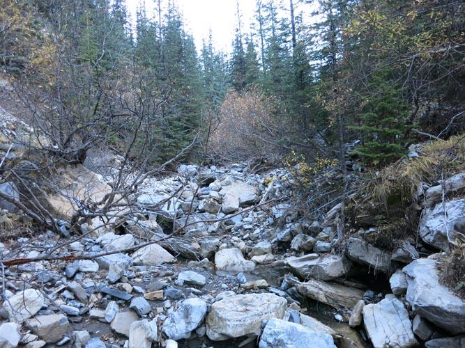 Hood_IMG_3101_Going up King Creek North (view N)